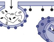 Pre-expositieprofylaxe tegen hiv-infectie
